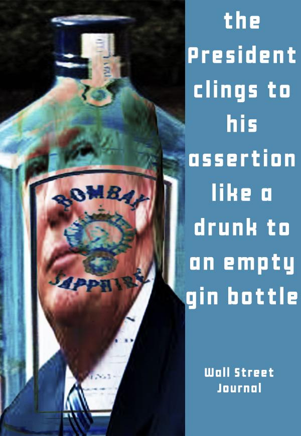 gin copy